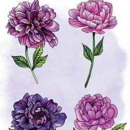 CraftEmotions Clear Stempel Pfingstrose 4 Blüten